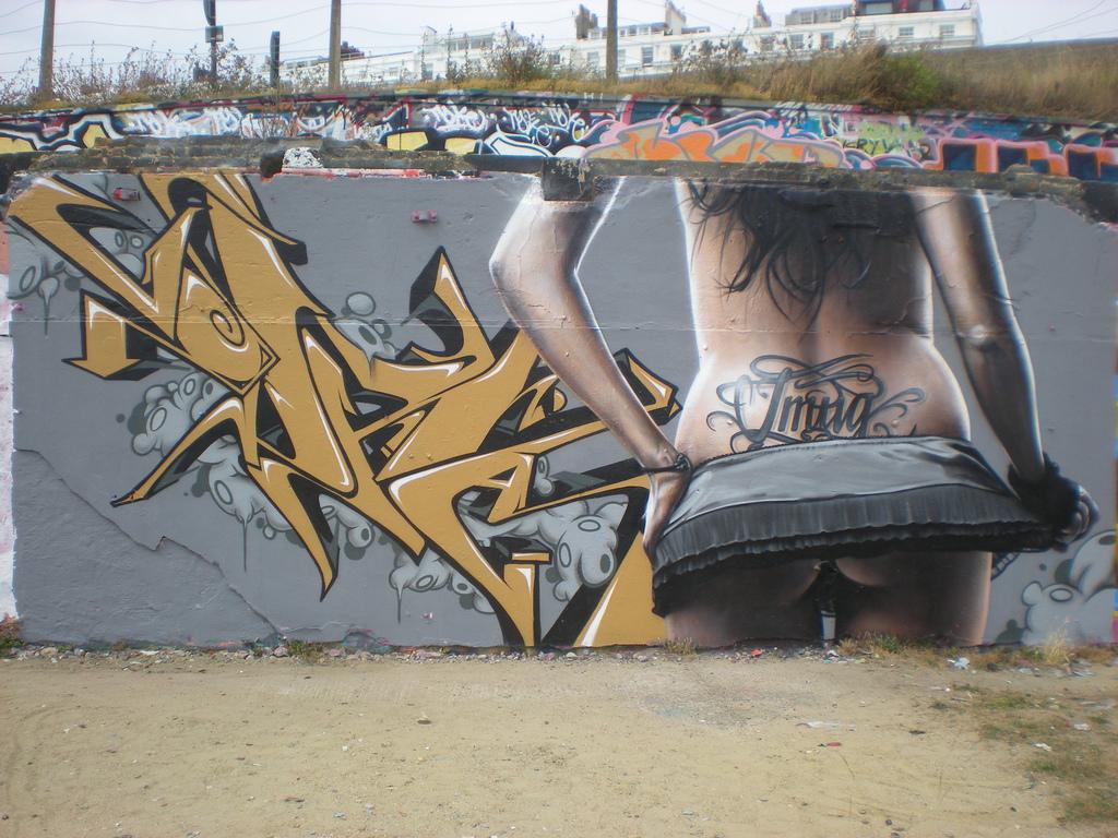 afarm5.static.flickr.com_4142_4830265509_28e6946ed7_b.jpg