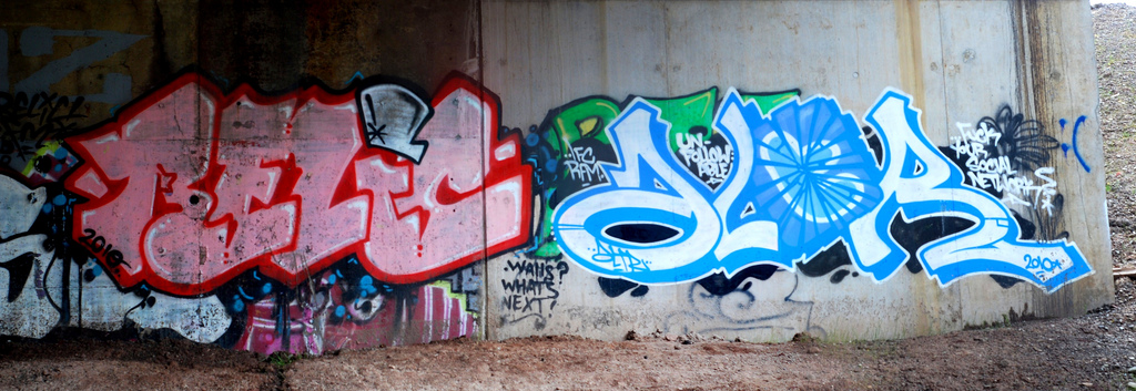 afarm6.static.flickr.com_5313_5869371562_ec76b5bc4f_b.jpg
