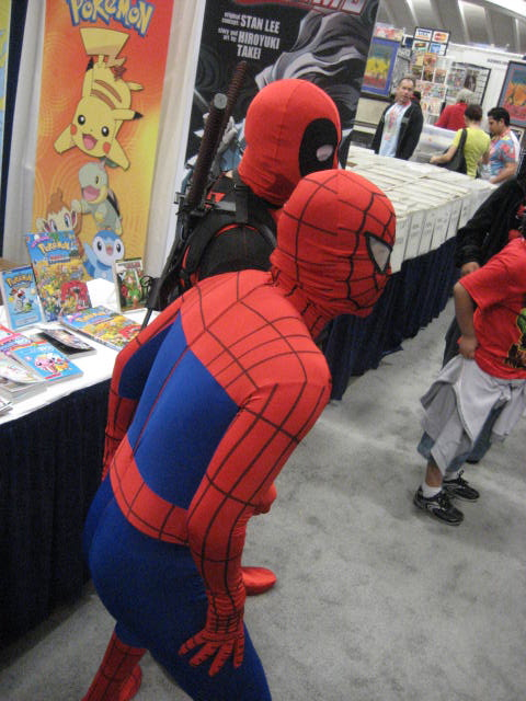 awww.spidermancrawlspace.com_wordpress_wp_content_uploads_2010_04_4490259998_3bba81f834_o.jpg