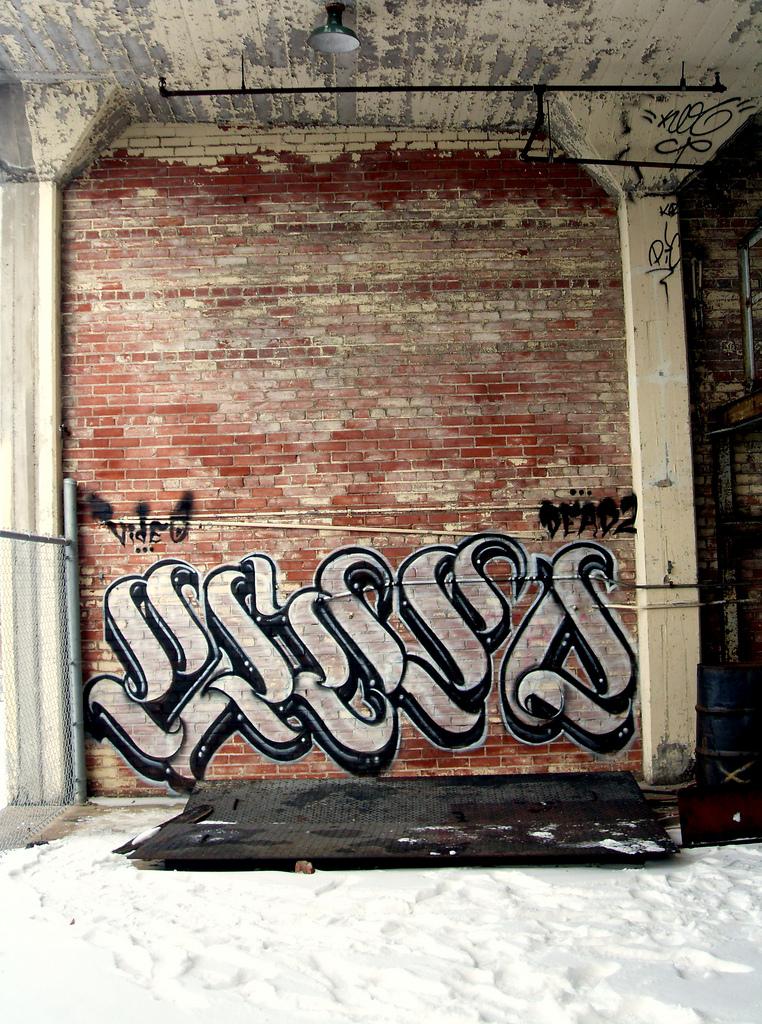 afarm6.static.flickr.com_5098_5562743620_c1e82618e1_b.jpg