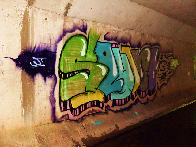 afarm4.static.flickr.com_3335_4639185683_d391a0bf18_z.jpg