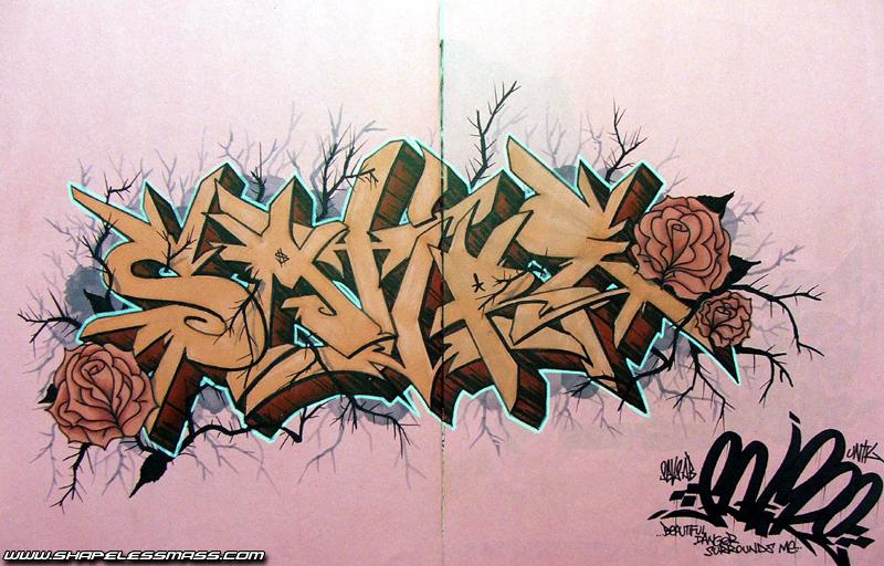 awww.shapelessmass.com_snm_wp_content_visuals_blackbook_roses.jpg