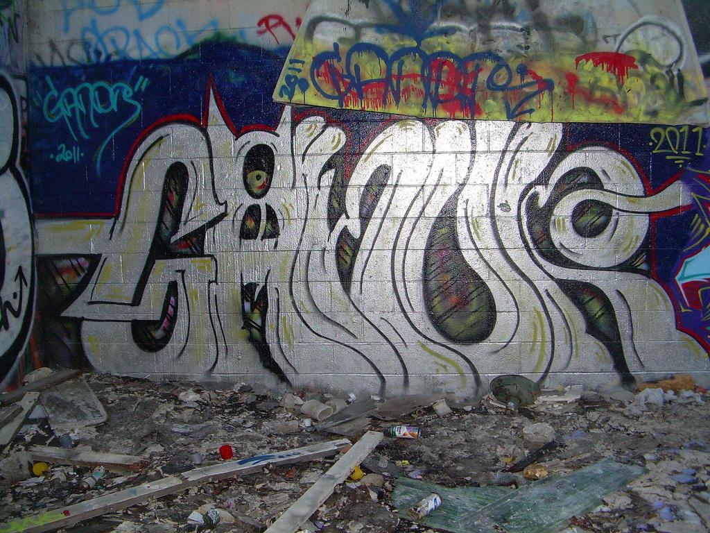 afarm6.staticflickr.com_5084_5321995647_9a392a28ac_b.jpg