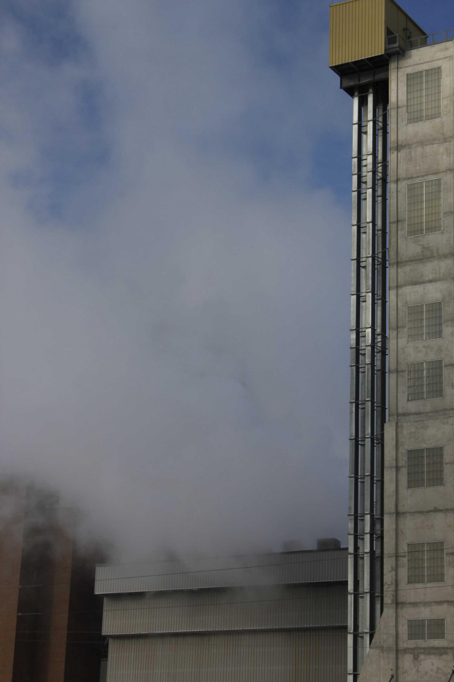 Canada Malting Steaming.jpg
