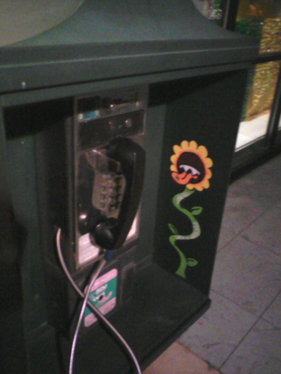 phoneflower.jpg