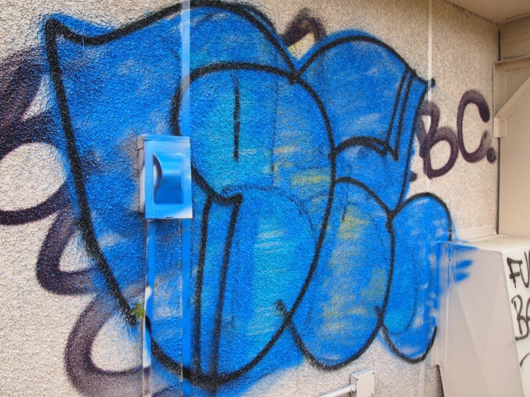 blue 15.jpg