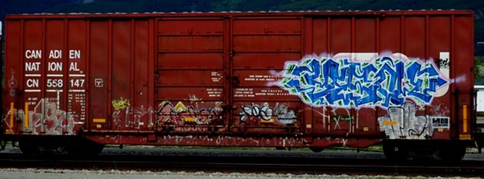 DSC_064200