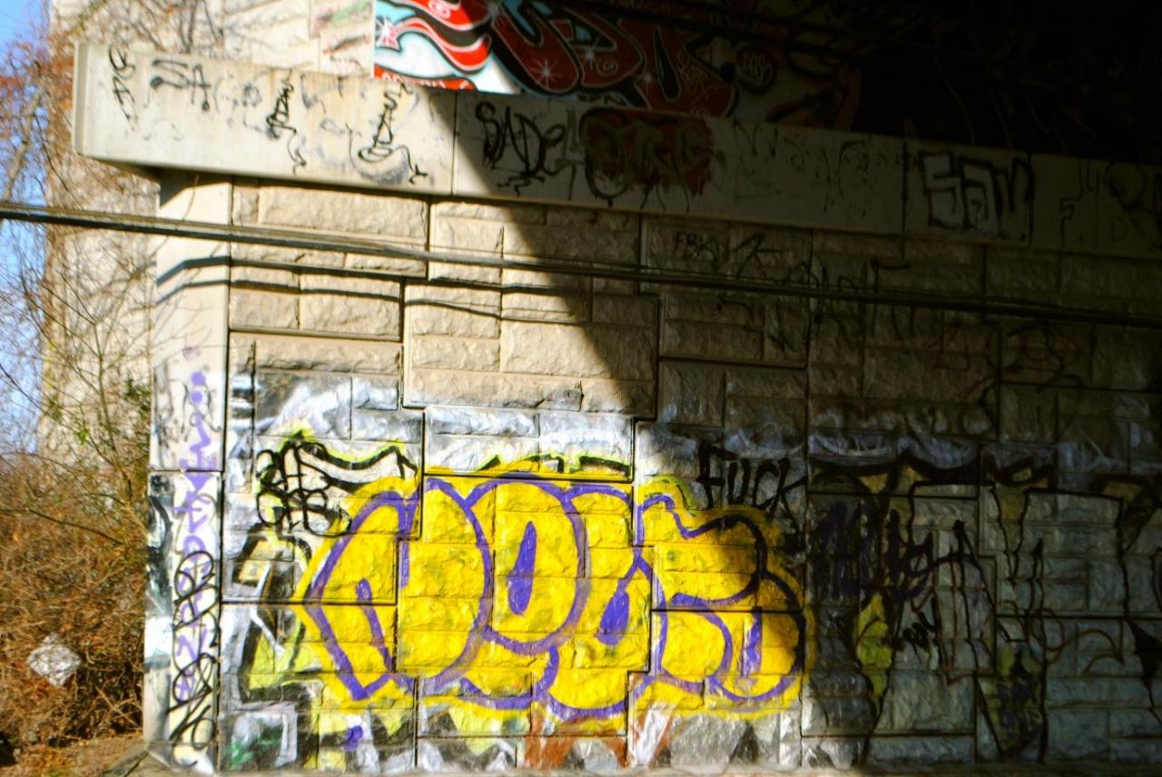 DSC_1545