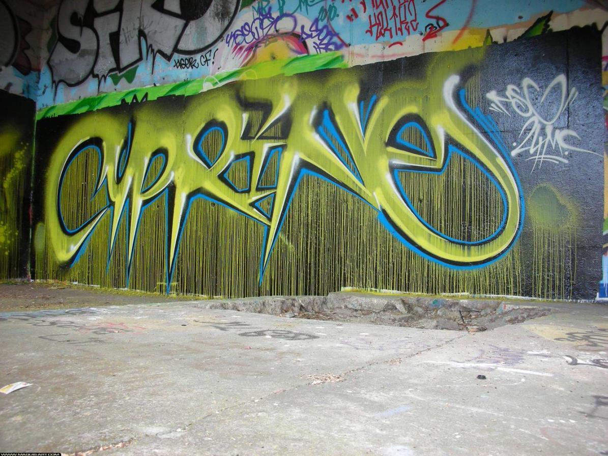 33238-graffiti-2011-Angers-Divers-MaquisArt.com.jpg