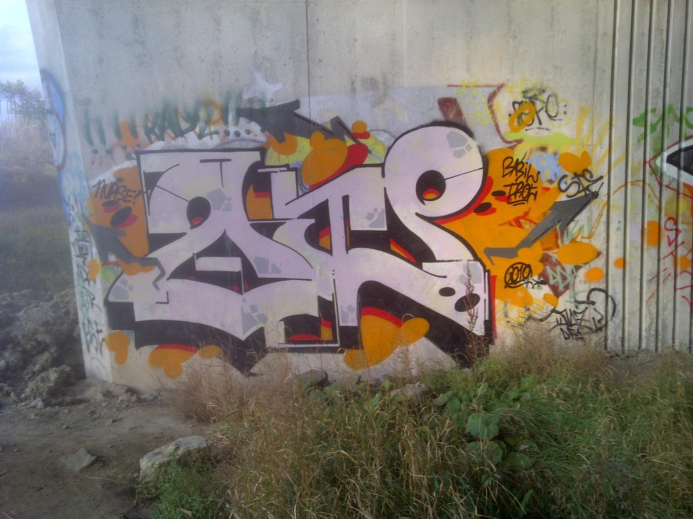 IMG-20121106-00066.jpg
