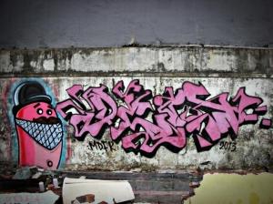 DSCN0797