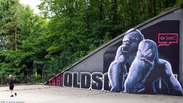 xun.fr-graffiti-session-by-derniers-upload-crews-p19-palaiseau-0000022551.jpg