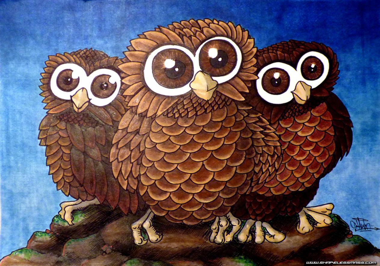 bres owls.jpg