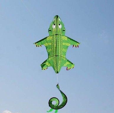 1141_crok-nylon-tailspin-flying-crocodile-kite-with-line-amp-winder.jpg