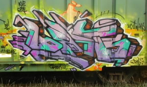DSCN8571 (2)
