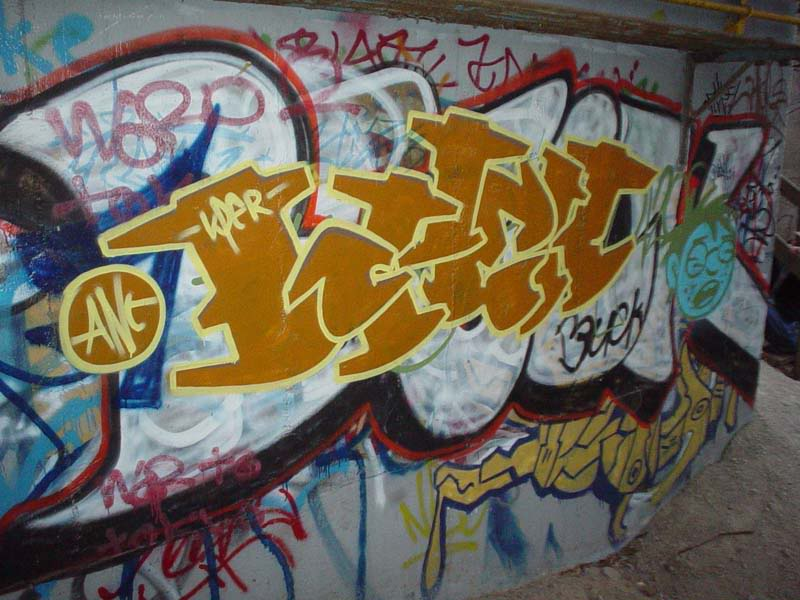 img64.photobucket.com_albums_v194_bowzr_graffiti_10.jpg
