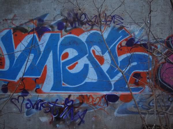img9.photobucket.com_albums_v25_max1234_meshesh.jpg