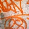 Orange tag 2019