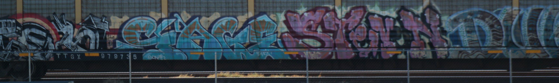 SAM_8771.jpg