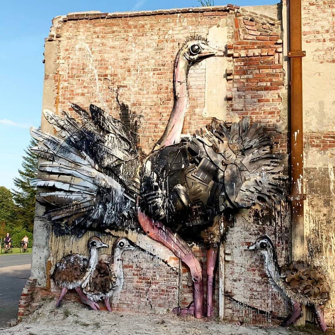 street_art_and_graffiti_66980045_431759557437142_1300468507329965148_n.jpg