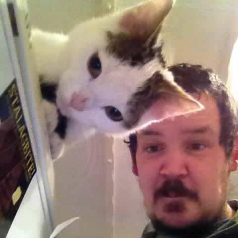 transparent cat.jpg