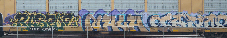 SAM_3596.JPG