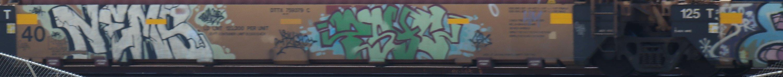 SAM_4550.JPG