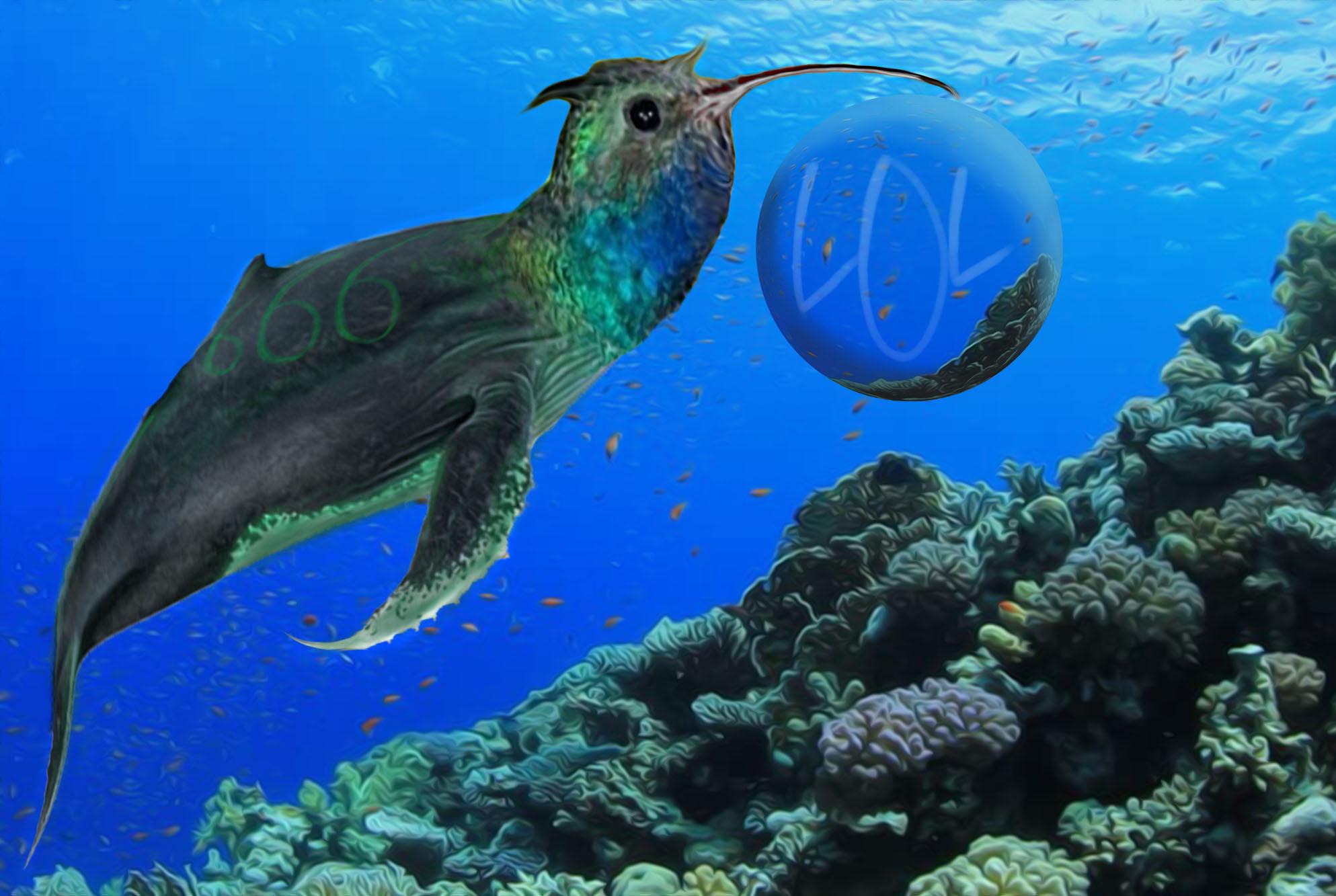 whalebird66611.jpg